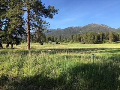 Lake County Residential Lots & Land Under Contract Taking Back-Up : 33906 Bluebird Lane