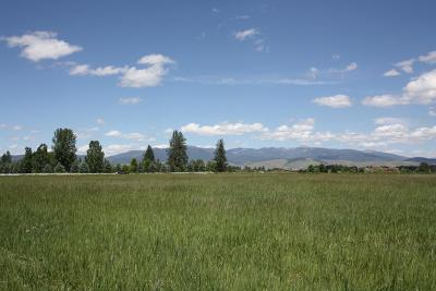 Missoula County Residential Lots & Land For Sale: Lot 3 Big Flat Road