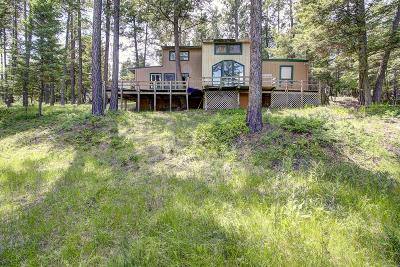 Flathead County Single Family Home For Sale: 245 Kila Cliff Trail