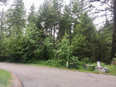Bigfork Residential Lots & Land For Sale: 583 Ranch Road