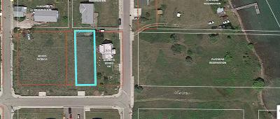 Lake County Residential Lots & Land For Sale: Nhn Main Street