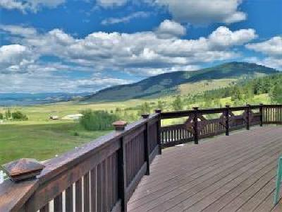 Lake County Single Family Home For Sale: 30289 Buffalo Bridge Road North