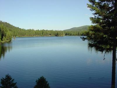 Condon, Potomac, Seeley Lake Residential Lots & Land For Sale: S3 Emerald Lake Loop