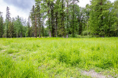 Whitefish Residential Lots & Land For Sale: 2054 Bench Mark Lane