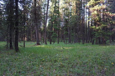 Lincoln County Residential Lots & Land For Sale: Lot 6a Pomeroy Trail