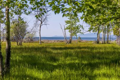 Bigfork Residential Lots & Land For Sale: 320 Holt Drive
