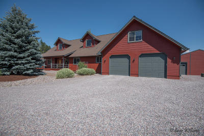 Bigfork Single Family Home For Sale: 375 Ferndale Drive