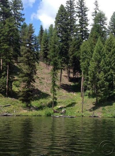 Condon, Potomac, Seeley Lake Residential Lots & Land For Sale: 2049 Westlake Way
