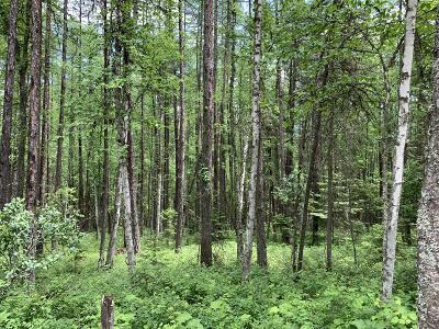 Whitefish Residential Lots & Land For Sale: 2215 Lion Mountain Road