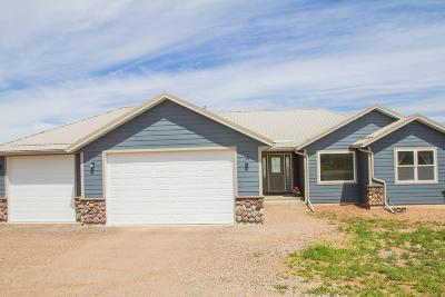 Great Falls, Black Eagle, Belt, Ulm Single Family Home For Sale: 41 Butch Cassidy Loop