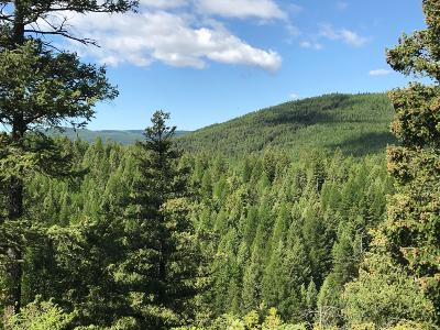 Lincoln County Residential Lots & Land For Sale: Parcel 1 Usfs Rd #3637c
