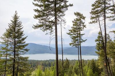 Whitefish Residential Lots & Land Under Contract Taking Back-Up : 145 Lookout Lane
