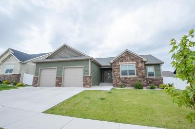 Great Falls, Black Eagle, Belt, Ulm Single Family Home For Sale: 1000 Choteau Avenue