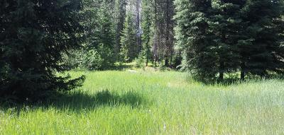 Lincoln County Residential Lots & Land For Sale: Lot 1 Champion Haul Road