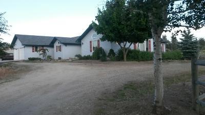 Stevensville Single Family Home For Sale: 4785 Hereford Lane