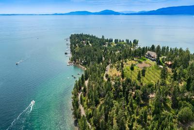 Lake County Single Family Home For Sale: 14958 Romain Drive