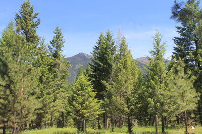 Lincoln County Residential Lots & Land For Sale: Nhn Canyon Creek Road