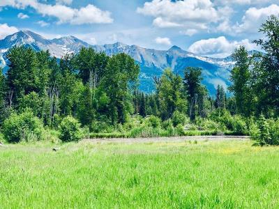 Condon, Potomac, Seeley Lake Residential Lots & Land For Sale: 527 Glacier Creek Road