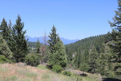 Bigfork Residential Lots & Land For Sale: Nhn Rock Ridge Way