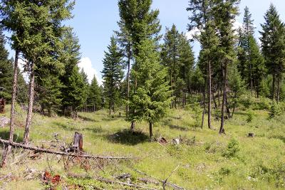 Lincoln County Residential Lots & Land For Sale: Nhn Kettlehorn Drive North