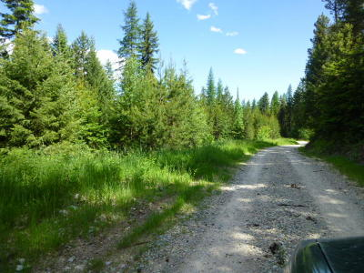 Flathead County Residential Lots & Land For Sale: 225-245 Chinook Lake Road