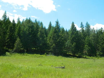 Kila Residential Lots & Land For Sale: Rogers Lake Road