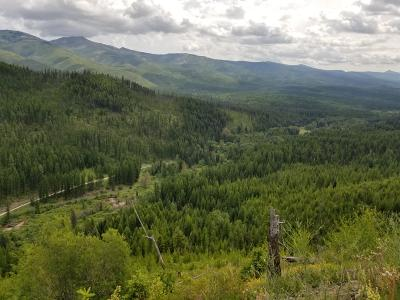 Missoula County Residential Lots & Land For Sale: Nhn 9 Mile Road