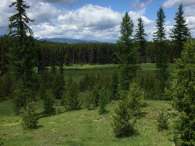 Missoula County Residential Lots & Land For Sale: Nhn2 Kraft Creek Road