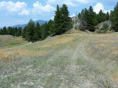 Lincoln County Residential Lots & Land For Sale: Lot 8 Borderview Drive