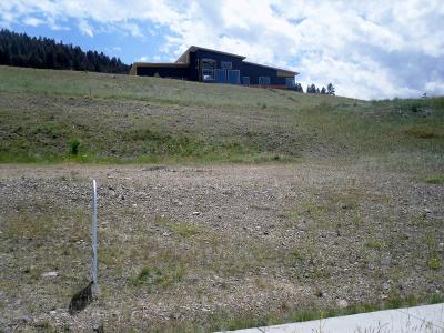 Missoula Residential Lots & Land For Sale: 241 Mansion Heights Drive