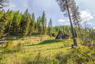 Alberton, Saint Regis, Huson, Heron, Noxon, Paradise, Superior, Thompson Falls, Trout Creek Single Family Home For Sale: 3897 Petty Creek Road