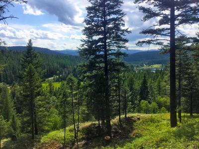 Whitefish Residential Lots & Land For Sale: 116 Little Mountain Road