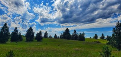 Polson Residential Lots & Land For Sale: Lot 37 Southlake Crest