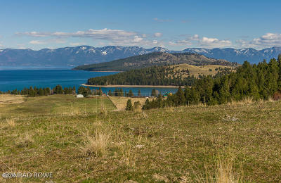 Lake County Residential Lots & Land For Sale: Nhn