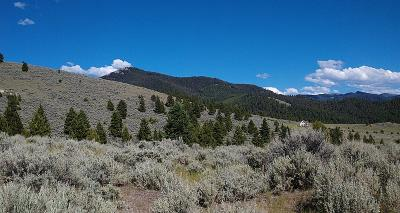 Corvallis Residential Lots & Land For Sale: Soft Rock Road