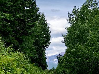 East Glacier Park Residential Lots & Land For Sale: Big Springs Trail