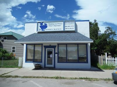 Lake County Commercial For Sale: 105 3rd Avenue East