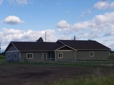 Flathead County Single Family Home For Sale: 478 McWenneger Drive
