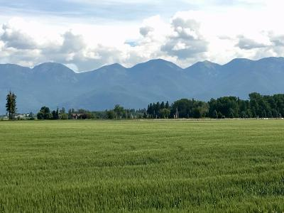 Kalispell Residential Lots & Land For Sale: 555 Sonstelie Road