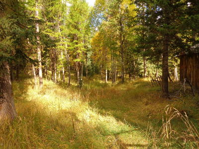 Lincoln County Residential Lots & Land For Sale: 2830 Marl Lake Creek Road