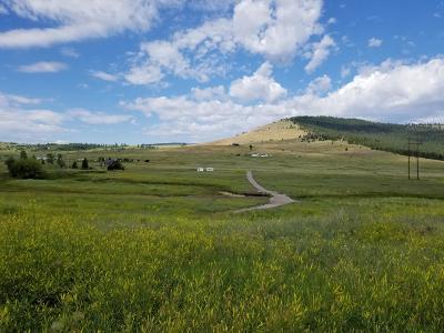 Lake County Residential Lots & Land For Sale: 29170 Walking Horse Lane