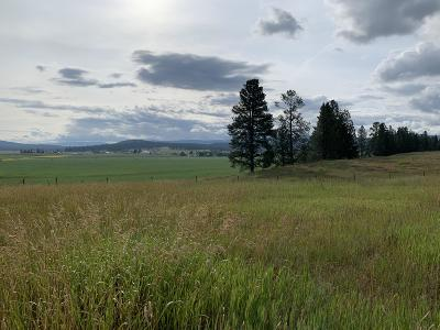 Missoula County Residential Lots & Land For Sale: 634 Morrison Lane