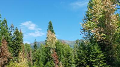 Bigfork Residential Lots & Land For Sale: Big Rock Way