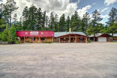 Flathead County Commercial For Sale: 15644 Hwy 2 East