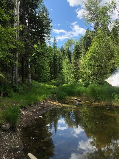 Lincoln County Residential Lots & Land For Sale: 486 Spotted Deer Trail