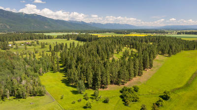 Kalispell Residential Lots & Land For Sale: 515 Fairview Crossroad