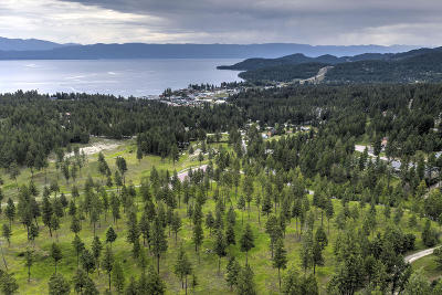 Lakeside Residential Lots & Land Under Contract Taking Back-Up : Nhn Bierney Creek Road
