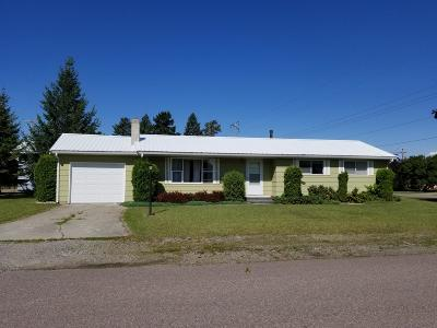 Columbia Falls, Hungry Horse, Martin City, Coram Single Family Home For Sale: 1108 10th Avenue West