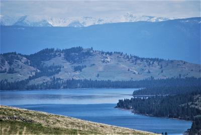 Lake County Residential Lots & Land For Sale: Nhn Walking Horse Lane