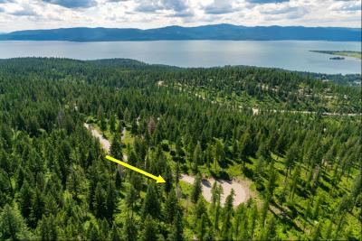 Bigfork Residential Lots & Land For Sale: 205 Pinto Trail